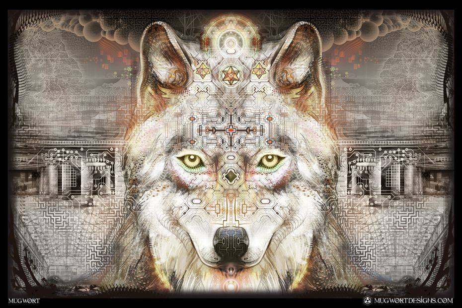 Wolf Territory   Body Mind Wholeness